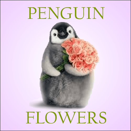coupon wallet penguin flowers coupon for 10 off your order of