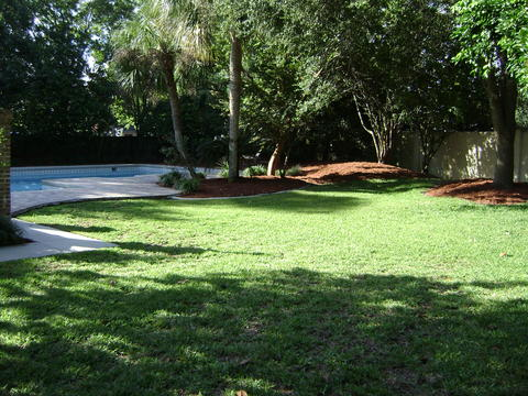 Reeves Lawn Service Coupons In Jacksonville Landscaping