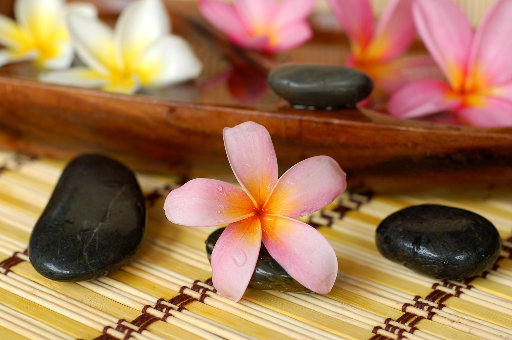 Massage by sheila coupons in anderson massage localsaver for A new salon seneca sc