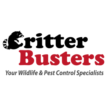Critter Busters Inc Coupons In Canyon Country Pest Control Localsaver