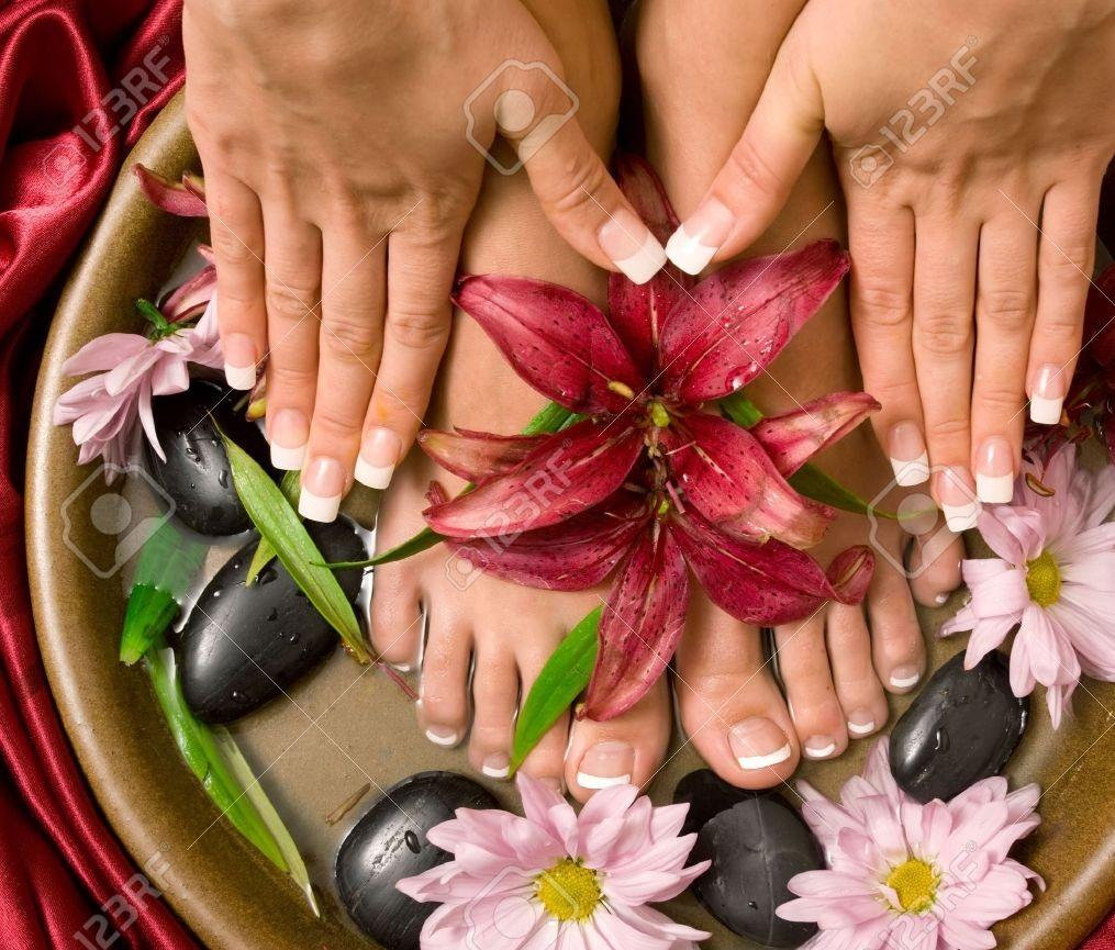 Businesses   Nail Salons   DataSphere