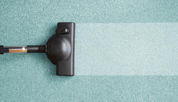 Bradenton Carpet Cleaning