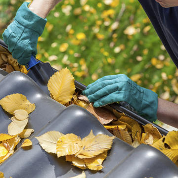 Yelm Gutter & Roof Cleaning