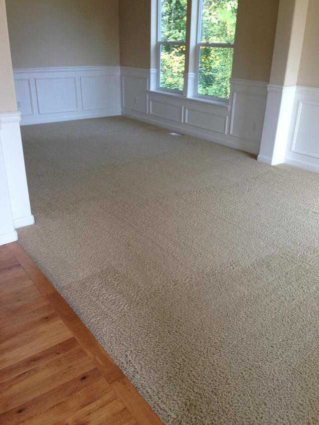 Bellevue Lm Carpet Cleaning Datasphere