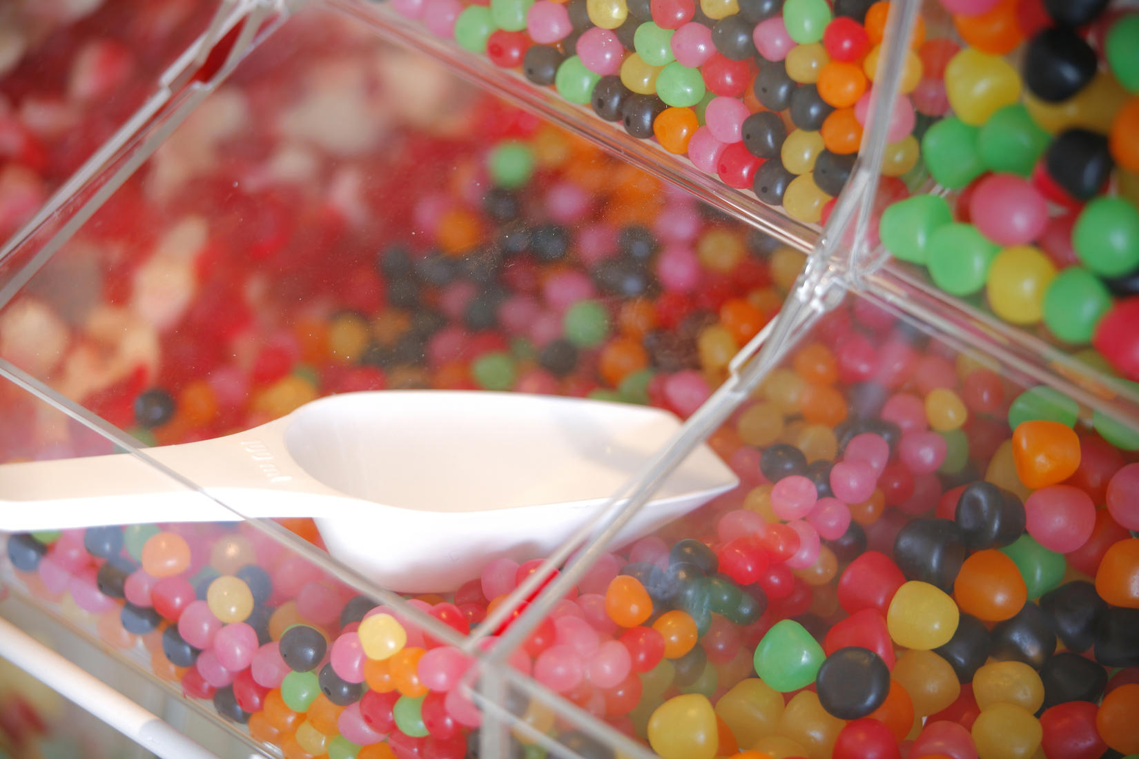 Candy Stores Coupons & Deals Near South Portland, ME | LocalSaver