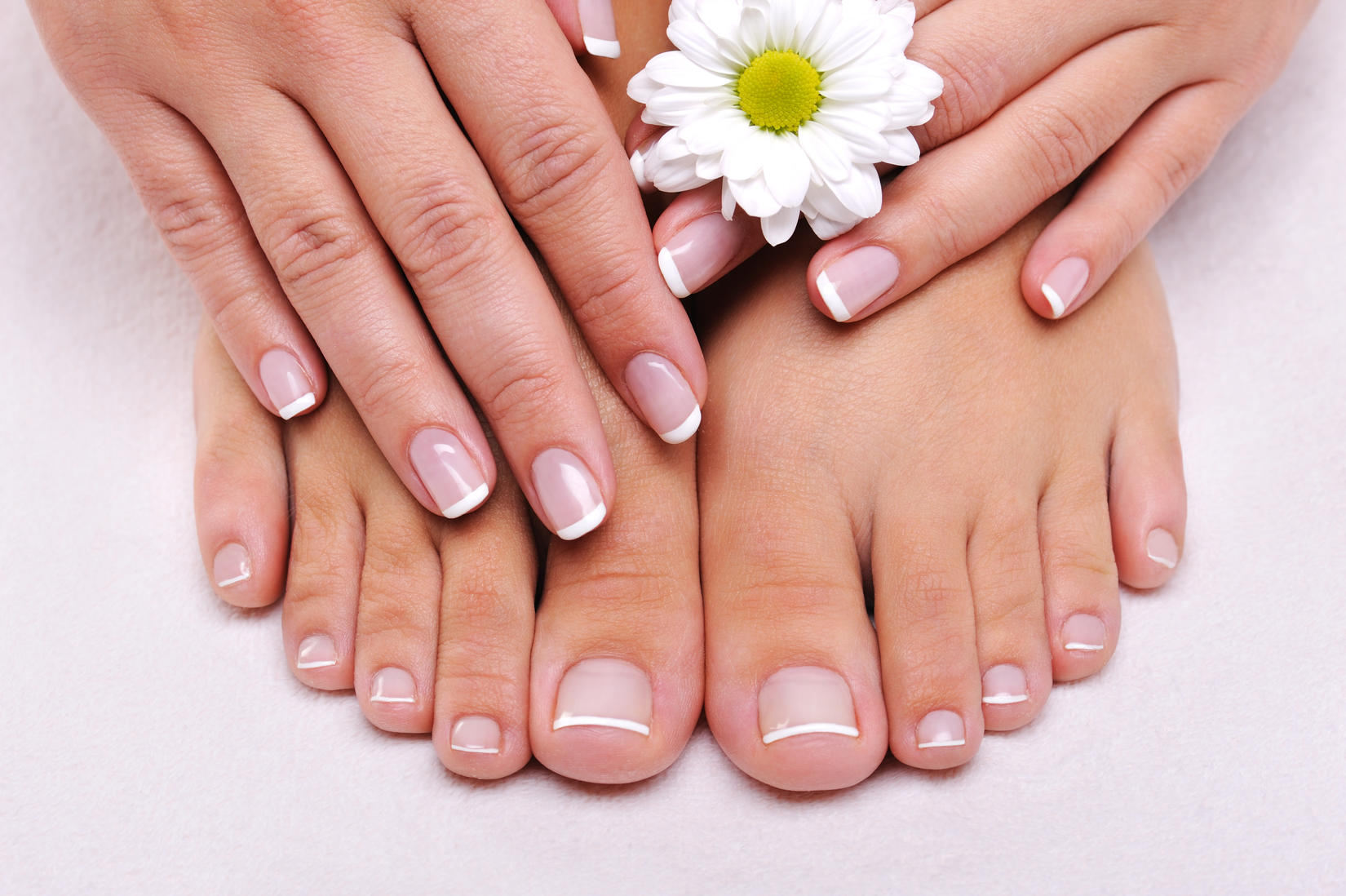 Designer Nails Coupons in Longmont | Nail Salons | LocalSaver